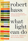 What Light Can Do Essays on Art, Imagination, and the Natural World